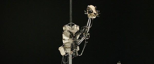 Het rariteitenkabinet op grote schaal in een museum. Dat is eigenlijk het werk van Christiaan Zwanikken (1967) bij Museum het Valkhof. De vergelijking met rariteitenkabinet in relatie tot zijn werk […]