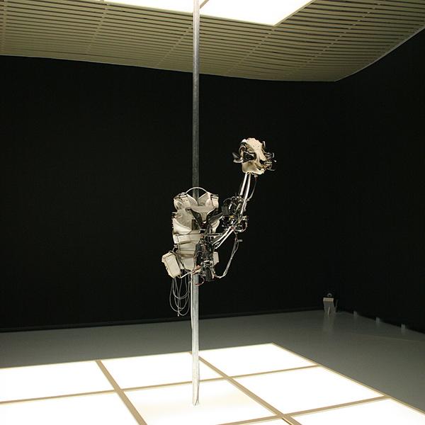 Christiaan Zwanikken - Exoskeletal