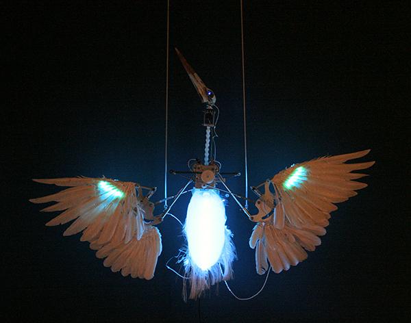 Christiaan Zwanikken - Phoenix