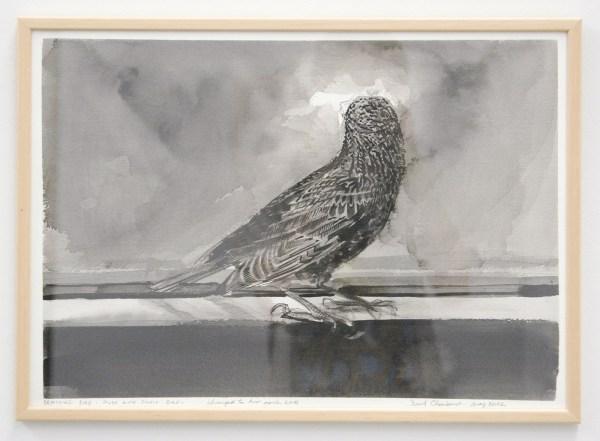 David Claerbout - Breathing Bird - Study with single bird - Gewassen inkt en viltstift op papier