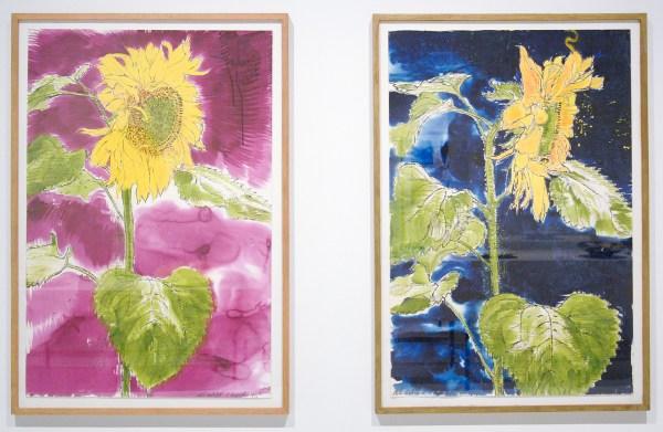 Erik Andriesse - Zonnebloem - Gouache op papier & Zonder Titel - Inkt, gouache en pastel op papier, beide 1987