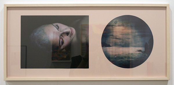 Flowers Gallery - Esther Teichmann