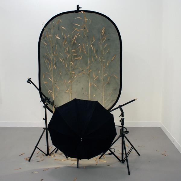 Galeria Fortes Vilaca - Rodrigo Matheus