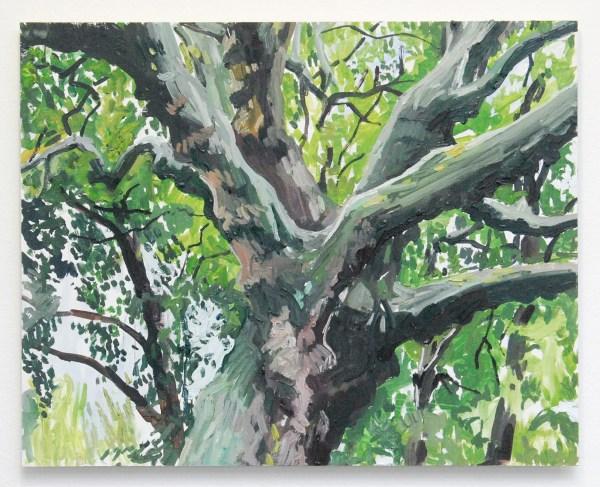 Jim Harris - Chestnut - 40x50cm Olieverf op MDF