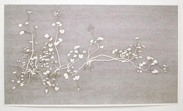Jorn van Leeuwen - Geranium Meteoor 48 - 233x125cm Pen op papier