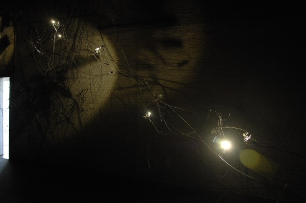 Katerina Undo - Creatures Cluster