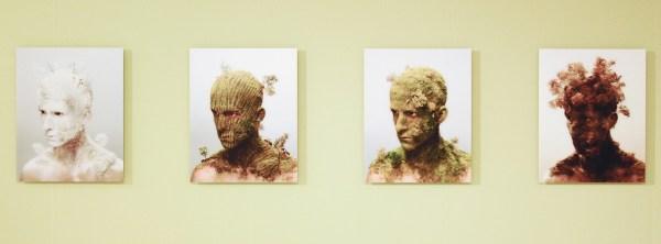 Levi van Veluw - Landscapes I, II, III & IV - Foto op dibond