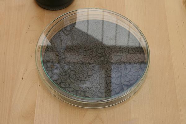 Loek Grootjans - Storage for Distorted Matter - Aarde uit de tuin van het Van Goghhuis