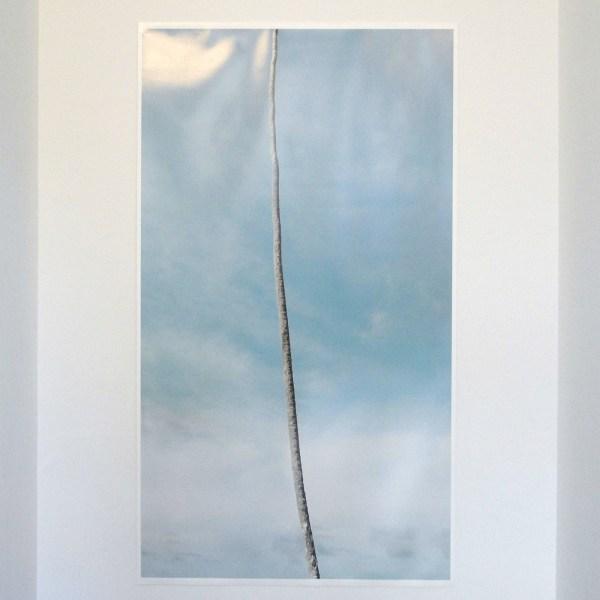 Moritz Wegwerth - Column - 152x85cm Foto