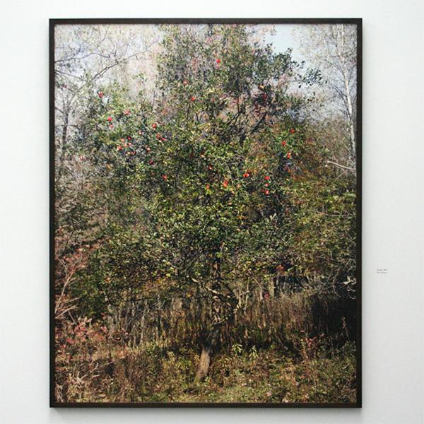 Philip-Lorca diCorcia - East of Eden - Pigmentdruk