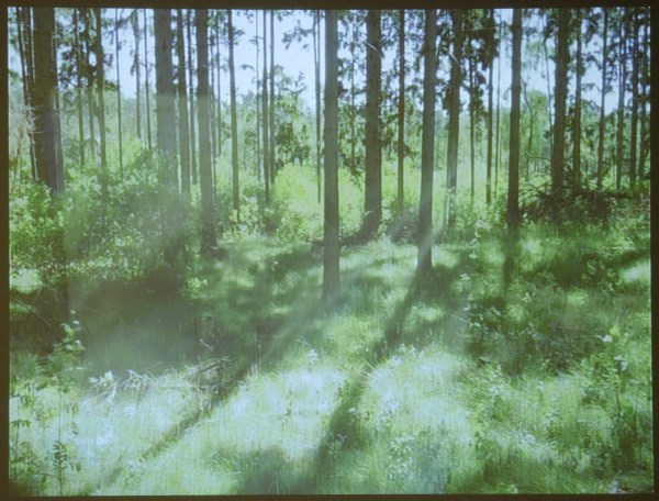 Sibylle Eimermacher - A Search of Meaning, A Search of Place II - 5uur (2008-heden)