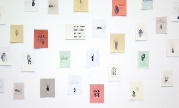 Simon Benson - Die Verwandlung - A4, A4+ en A3, 76 tekeningen, potlood op papier (detail)