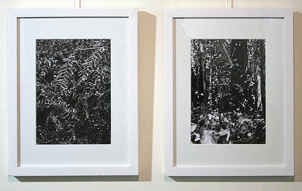 Thijs Zweers - Splitting Image - 29x21cm Grafiet op papier (detail)