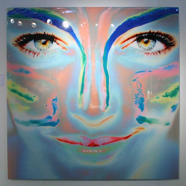Van Loon Galleries - Frank van Driel