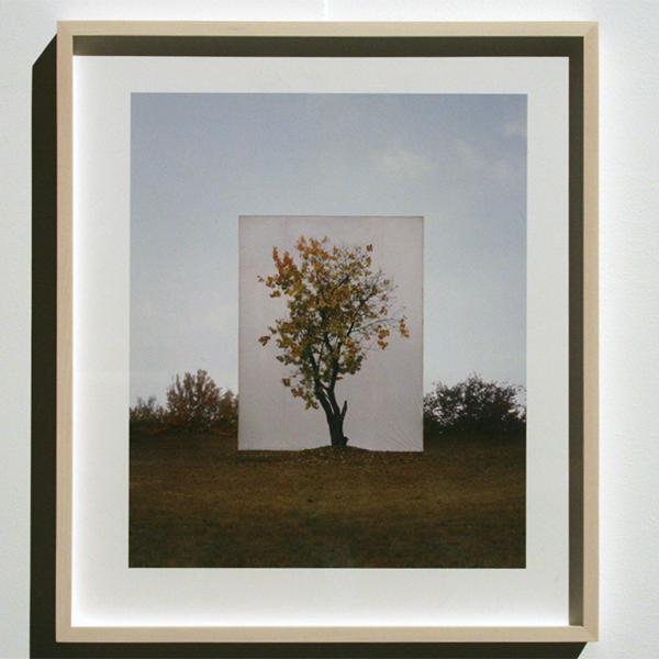 Yossi Milo Gallery - Myoung Ho Lee