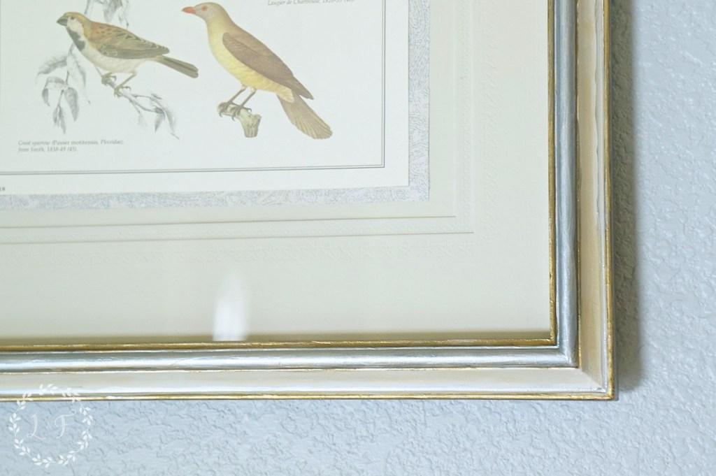 bird print 2