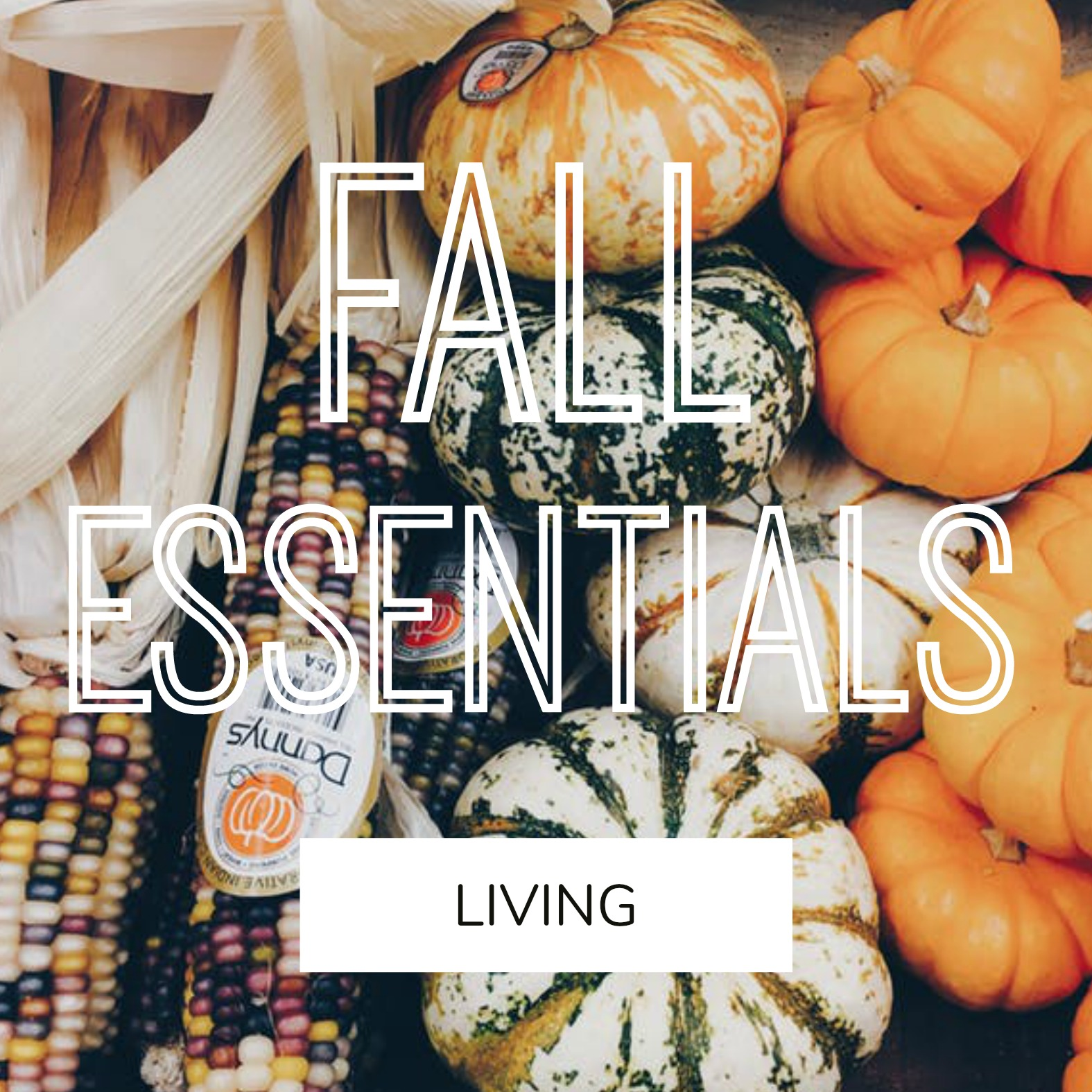 INTERIOR INSPIRATION #2 – Herbst Essentials