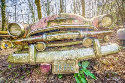Car-Graveyard-35.jpg