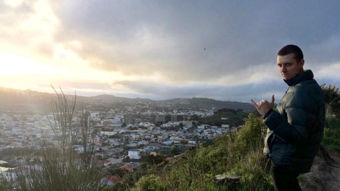 View_Of_Wellington