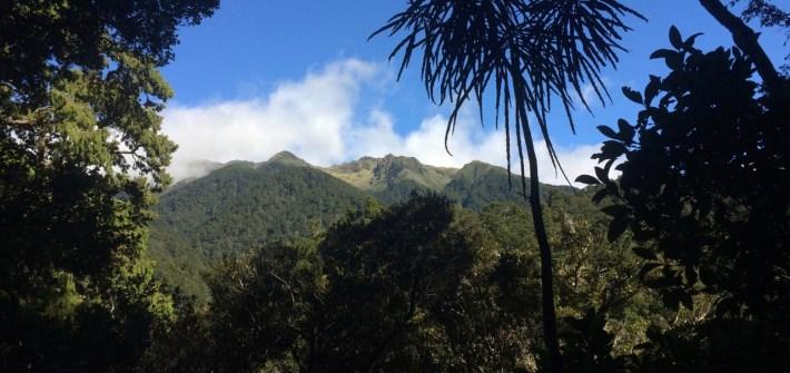 Mitre Flats Hut Tararuas Wellington New Zealand