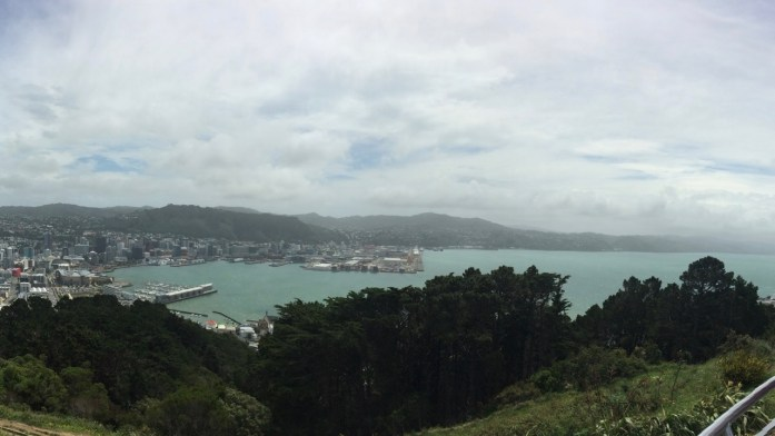 Wellington_View_From_Mount_Vic