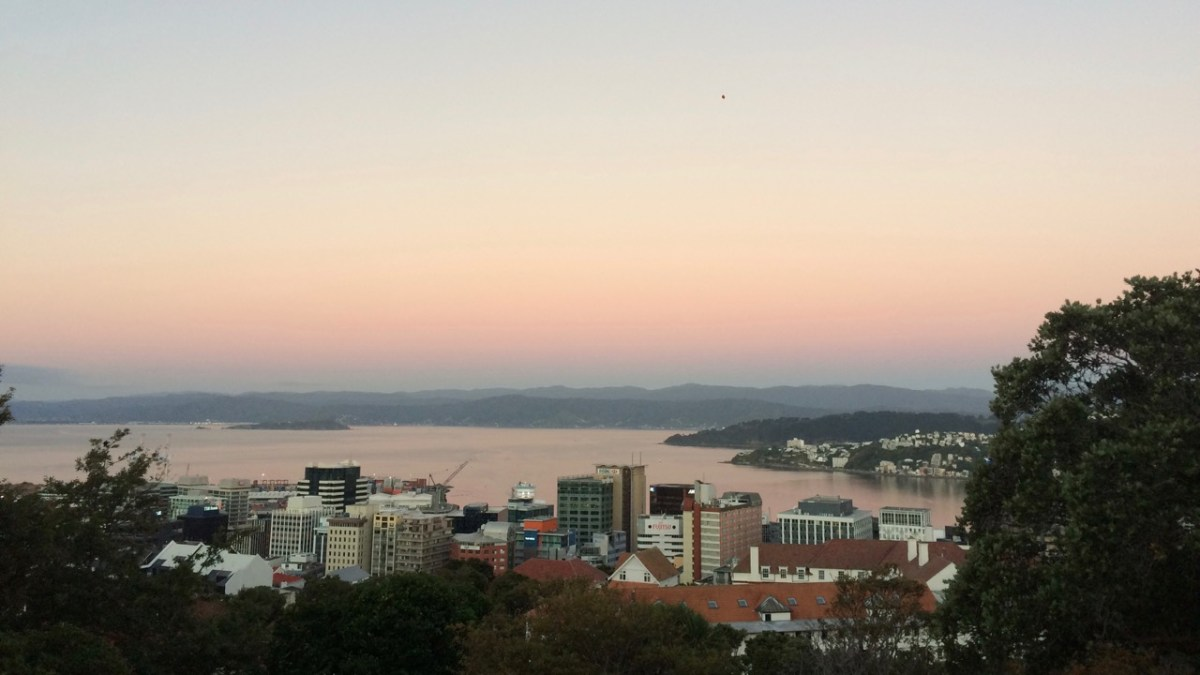 Where to live in Wellington - Which area is for you?