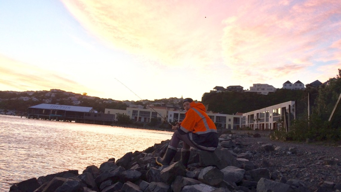 17 100% FREE things to do in Wellington on a Sunny Day