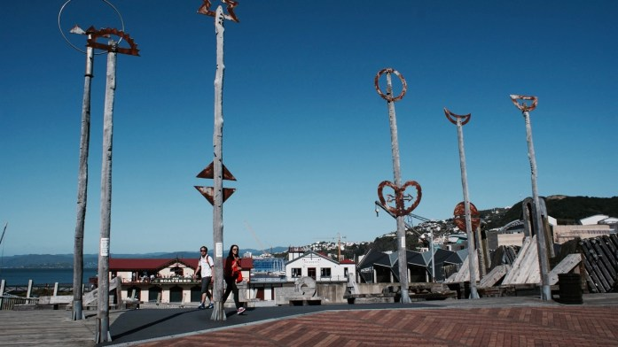 What to do in Wellington