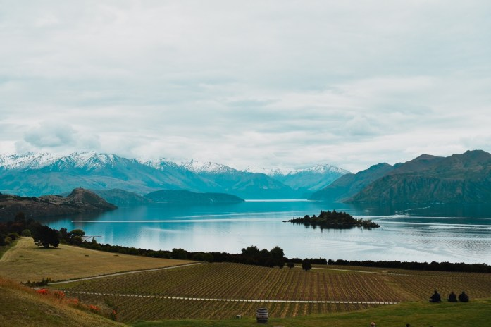 Rippon winery wanaka