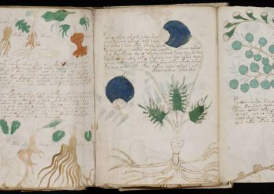 THE VOYNICH MANUSCRIPT WRITING HOOK