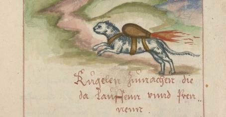 Rocket Cats treatise