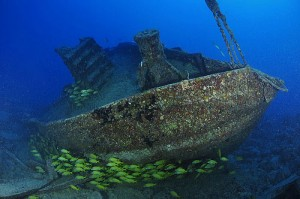 joes tug 300x199 - Key West Dive Sites