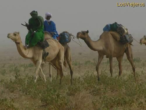 Caravana tuareg- desierto Tenere - NigerCaravan touareg - Tenere Desert - Niger