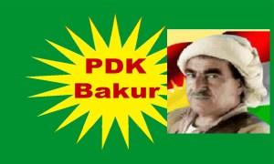 PDK_Bakur Kopie