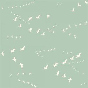 Bio-Baumwolle Birch Fabrics Birch Basics - Flight in mint