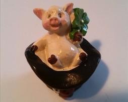Schwein im Zylinder