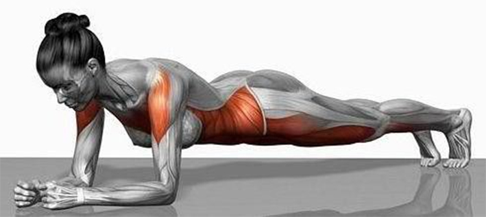 programme-lotus-gainage-planche
