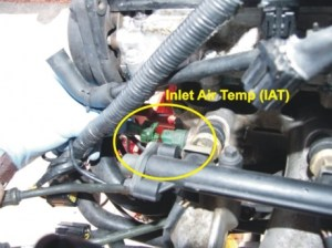 K Series EU3 Engine Loom Wiring Diagram  UpdatedCorrected | Lotus Seven Club