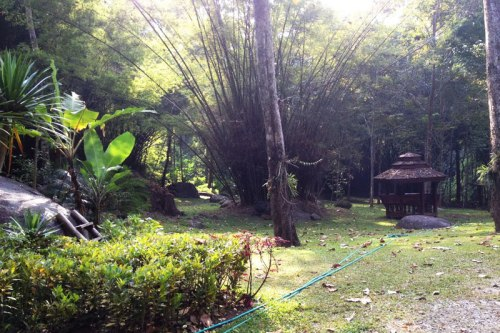 Ban Mae Sa Mai Hiking, Homestay Tour