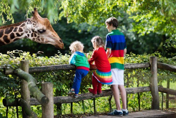 voordelen nadelen groot leeftijdsverschil tussen kinderen
