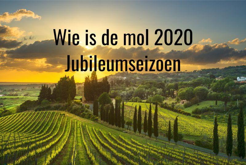 nabespreking wie is de mol 2020 jubileumseizoen aflevering 5 wegwerken