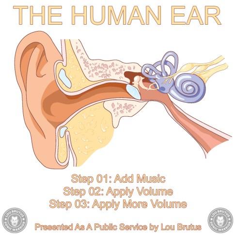 MEME-EAR-web