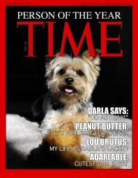 TIME-DARLA-WEB