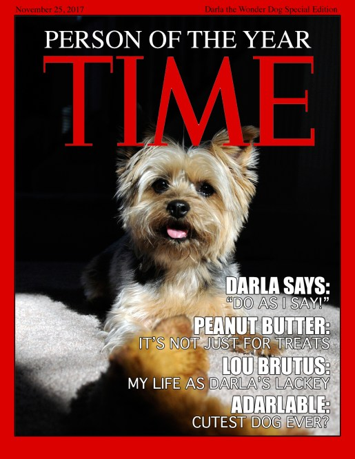 TIME-DARLA-WEB