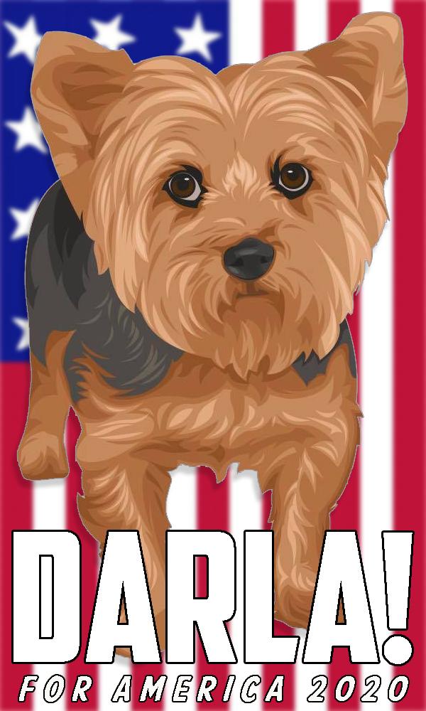2020-election-darla-02