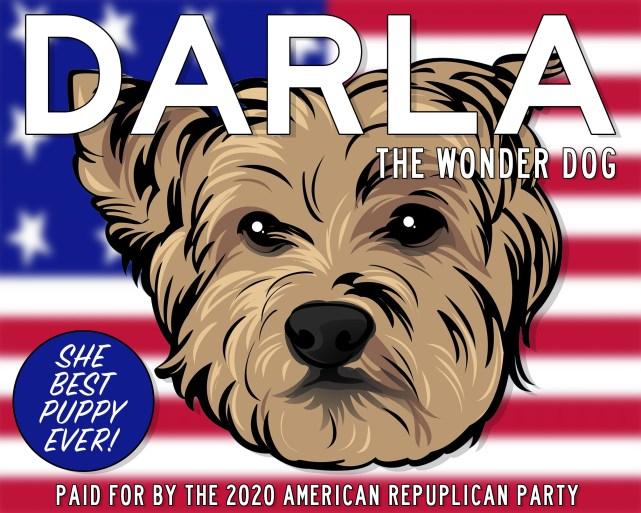 DARLA-2020-final-web