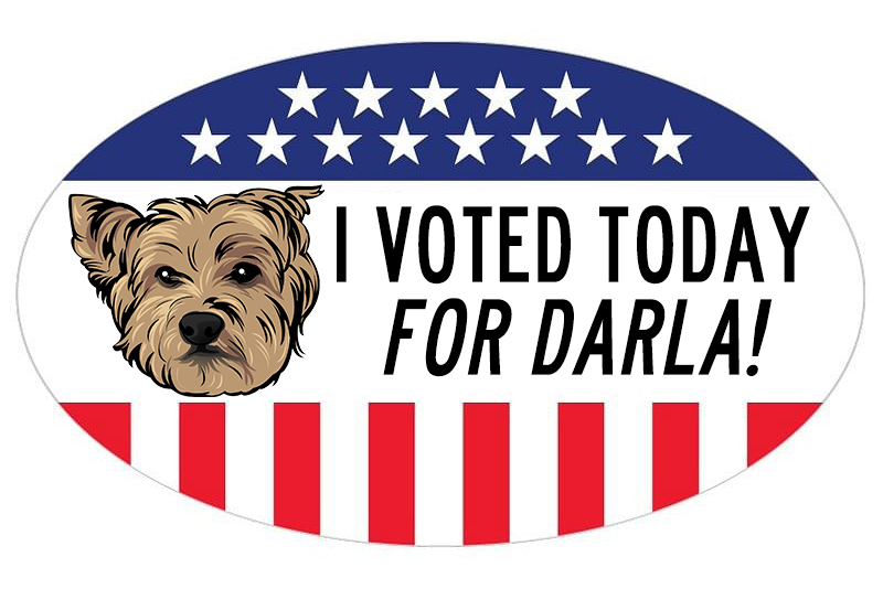 voted-TODAY-DARLA