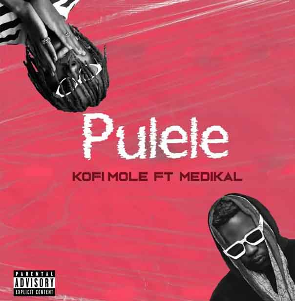 Kofi Mole ft Medikal - Pulele (Prod by BPM Boss)