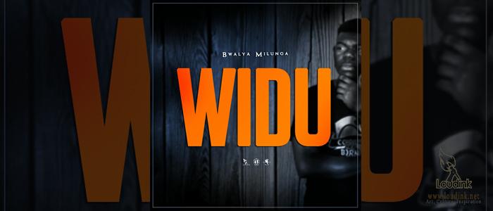WIDU Official Post Artwork @Loudink