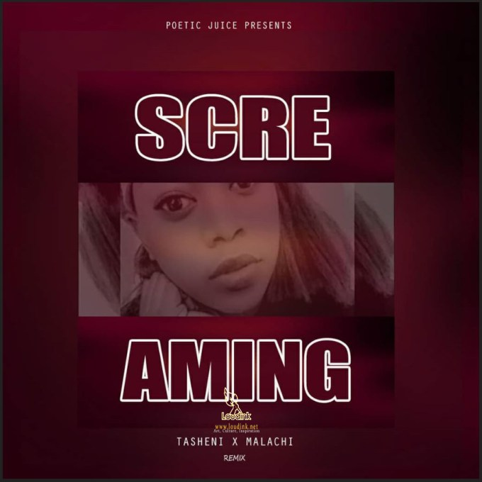 Official Screaming Remix Artwork @ Loudink